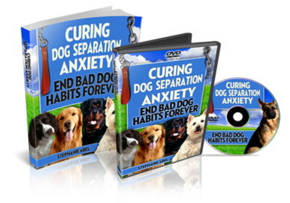 Product picture Curing Dog Separation Anxiety (PLR)